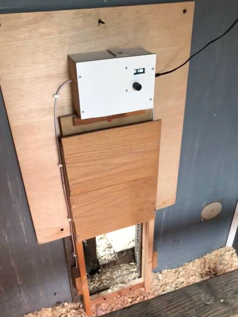 Automatic Chicken Door. Is it ok to leave chickens alone?