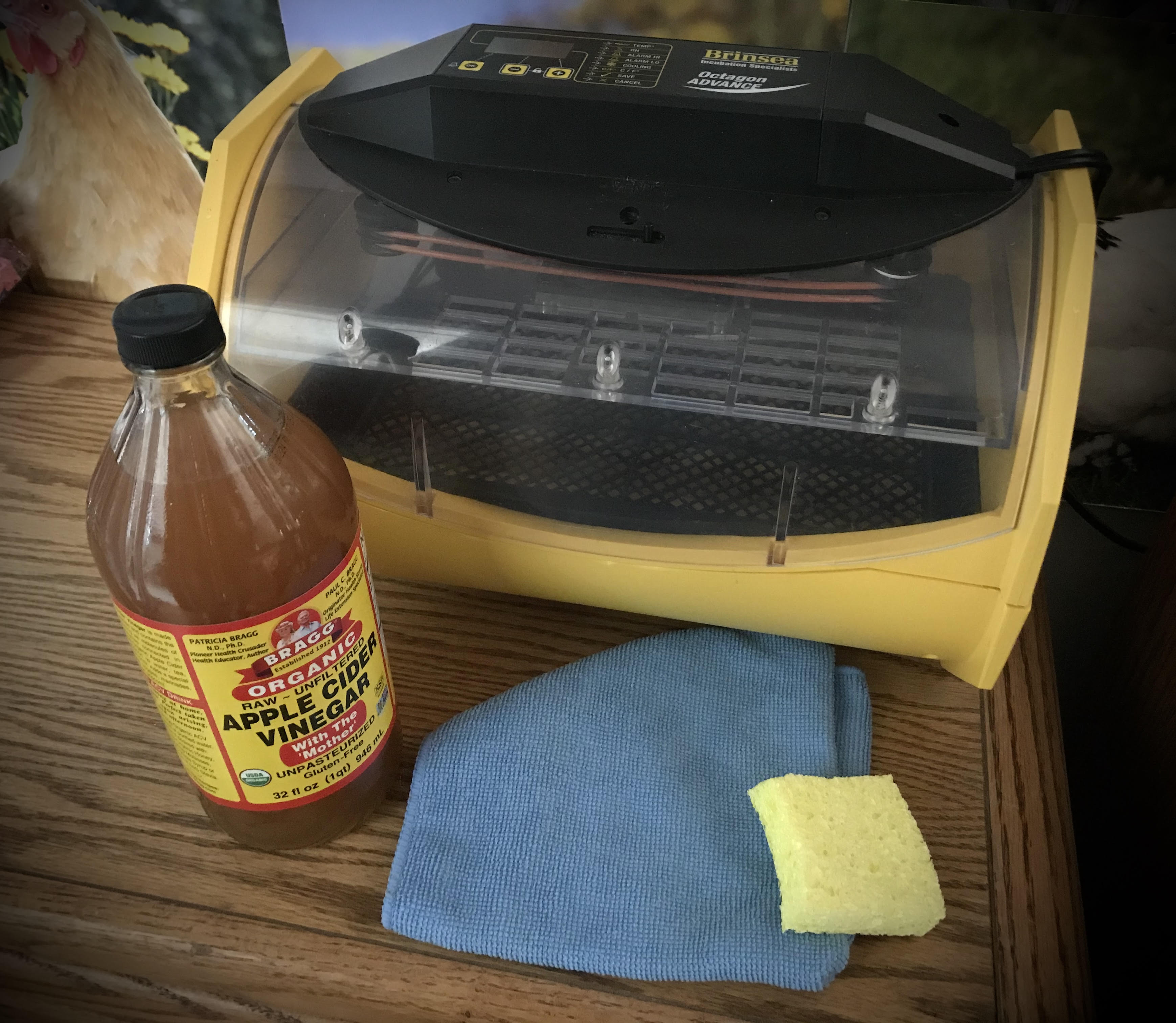 Clean your incubator with ACV, apple cider vinegar