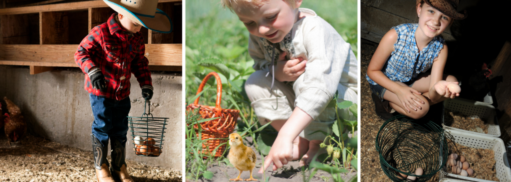 11 IMPORTANT WAYS RAISING CHICKENS WILL BENEFIT YOUR KIDS