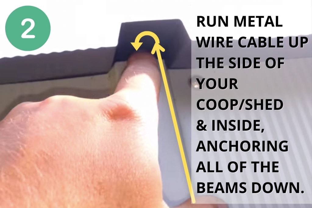 Run metal cable up the side of your coop and inside, anchoring all of the beams down.