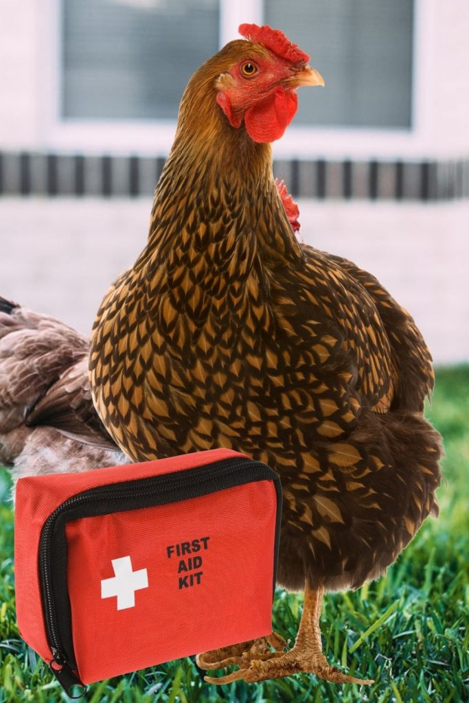 """KEEP A FIRST AID KIT IN YOUR """"GRAB AND GO"""" BUCKET FOR YOUR FLOCK."""