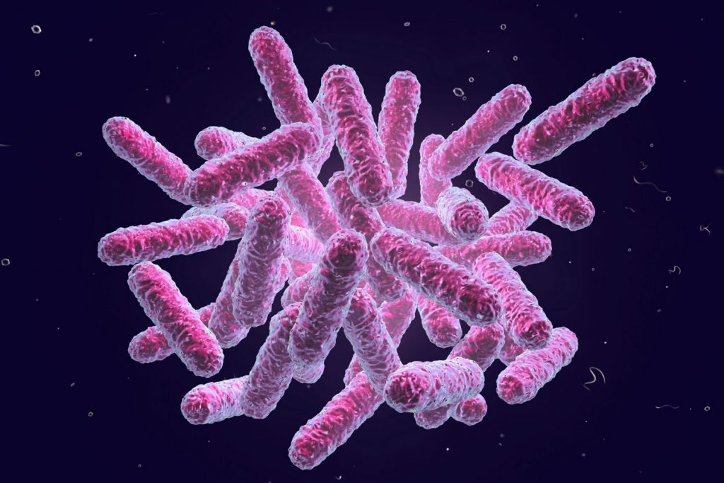 E. COLI IS A BACTERIAL INFECTION THAT CHICKENS CAN PASS TO HUMANS.